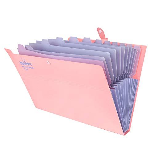 12 Tasche Cartella Portadocumenti, Cartellina Espandibile Fogli A4 Accordion Document Organizer File Folder Portatile