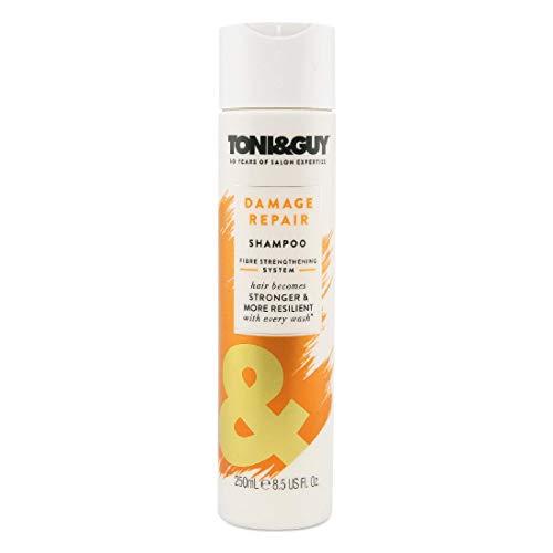 Toni&Guy Damage Repair Shampoo I Reparatur-Shampoo für strapaziertes Haar I Reparierendes Haar-Shampoo für alle Haar-Farben & alle Haar-Typen I Haar-Pflege-Shampoo für geschädigtes Haar I 250 ml