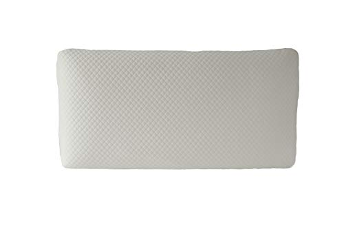 Danny's World Deluxe Memory Foam Pillow, White, Super Standard