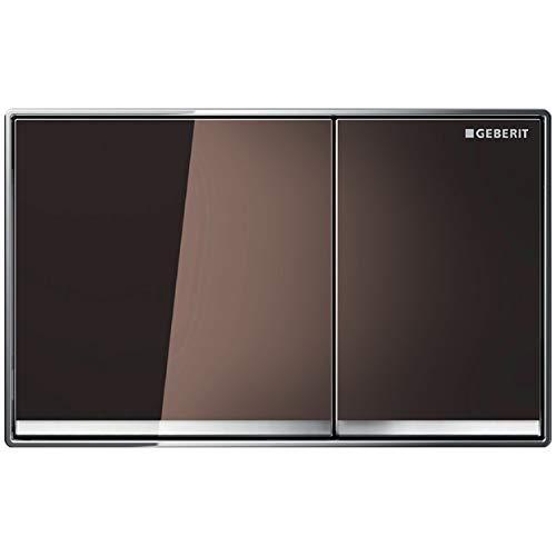 Geberit 115081SQ1 Abdeckplatte OMEGA 60 115.081.SQ.1 2-Mengenspülung Glas umbra