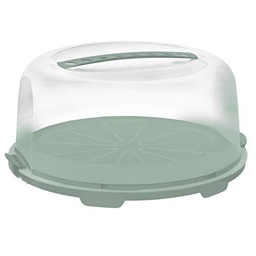 Rotho Fresh Tortenglocke hoch, Kunststoff (PP) BPA-frei, türkis/transparent, 34.6 cm