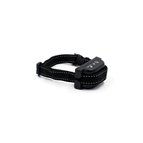 Wodondog Collar para ASIN B082K8GH2M