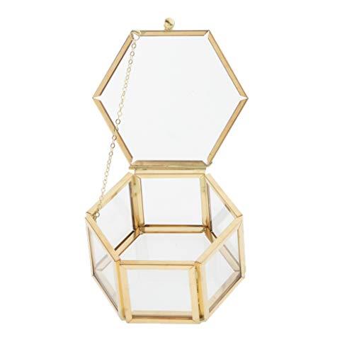 T TOOYFUL Schmuckschatulle Glas Transparente Glaskasten Geometrisches Glas Deckel Terrarium Box Vitrine für Ringe, Ohrringe, Juwelen und Armbanduhr