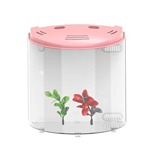 Qianhai Kit Acquario USB con Power Illuminazione a Power Forma LED Forma Half Moon Studio Decoration Fish Aquarium Rosa