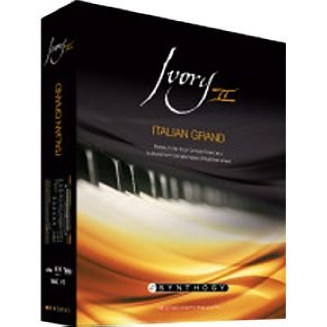 土一人で問い合わせるSYNTHOGY Ivory II Italian Grand ソフトウエア ピアノ音源 【並行輸入品】