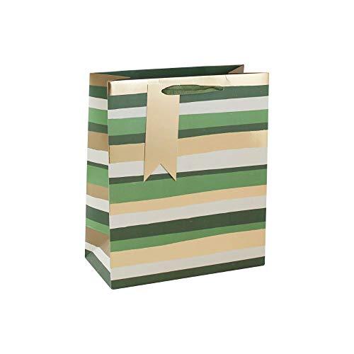 Clairefontaine 26526-3C - Un sac cadeau moyen 21,5x10,2x25,3 cm 210g, Ligné vert