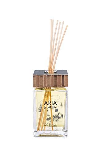 QC Terme Aria PRÉ Saint Didier 250ml Art Edition, Profumatore per Ambiente con Diffusore a Bastoncini, Fragranza Fresca, Fruttata, Legnosa, Speziata e Vanigliata, Made in Italy