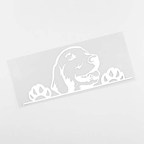 Autoaufkleber Kreative Golden Retriever Hund Spähen Vinylauto-Aufkleber Schwarz/Silber (Color Name : C)