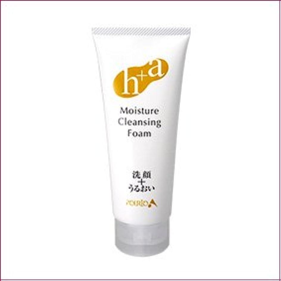 モディッシュ香水結紮ポルトA すっきり洗顔+しっとり保湿 モイスチャークレンジングフォーム