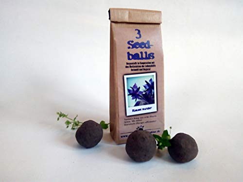 Die Seedball-Manufaktur 3er Seedballs Blaues Wunder, Naturfarbene Kraftpapiertüte, 5,5 x 13 x 3 cm