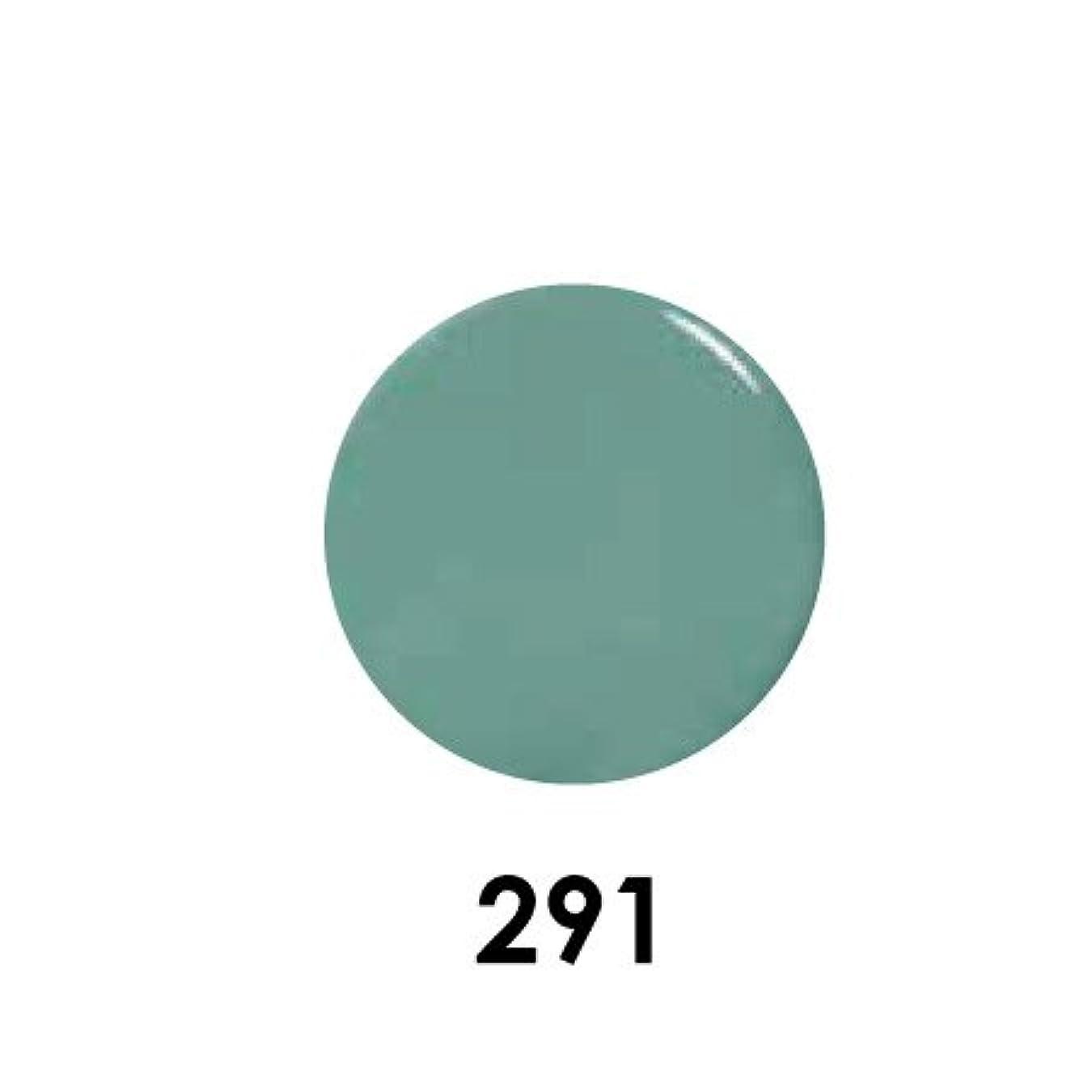 複雑でない引き出すありふれたPutiel プティール カラージェル 291 メキシカンターコイズ? 2g (MARIEプロデュース)