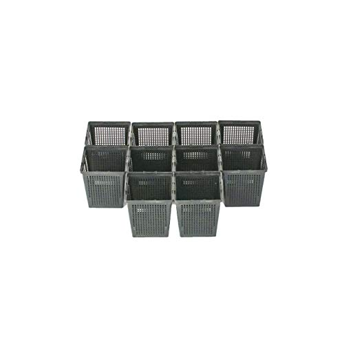 Inter Flowers – 10 cestas de Plantación – Cuadrado –