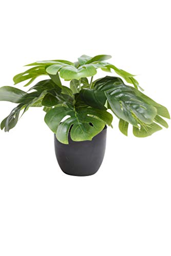 Flora-Seta GmbH Kunstpflanze (Alocasia, Dieffenbachia, Aglaonema, Zebrina, Calathea, Monstera) Höhe 20-30 cm im schwarzen Kunststofftopf (Monstera)