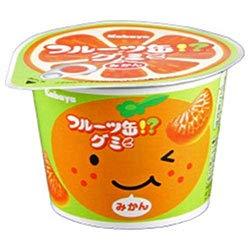カバヤ フルーツ缶グミ 50g×12個入×(2ケース)