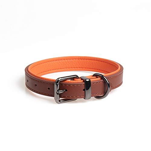 Collar para perro de cuero genuino B George, naranja chocolate, c├│modo genuino acolchado suave, ajustable, tama├▒o de cuello 33cm - 44cm