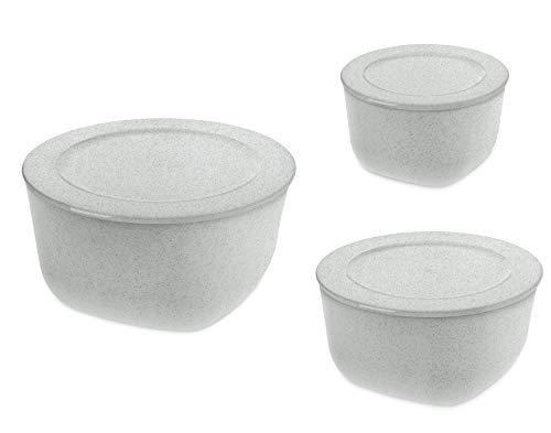 Koziol CONNECT BOX mit Deckel 3er-Set organic grey