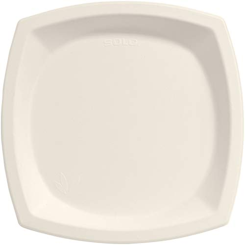 Dart 10PSC2050CT Bare Eco-Forward Sugarcane Dinnerware 10 dia Plate Ivory Pack of 125 Case of 4
