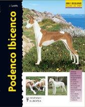 Podenco Ibicenco (Excellence)