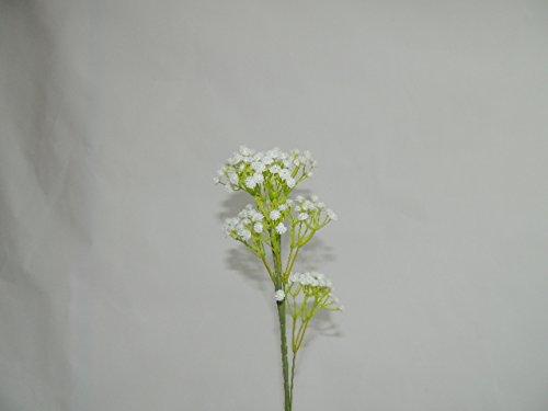 Sz – Bâton Paniculée 60 cm Blanc