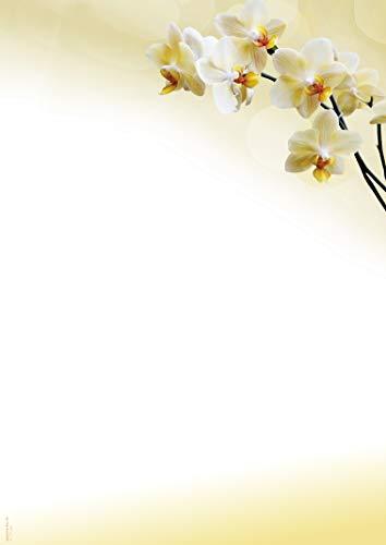 Briefpapier Orchidee hell, DP850, 50 Blatt DIN A4, 90 g/m², Motivpapier, Schreibpapier, Designpapier, Blumenmotiv, Geburtstag, Einladung, Brief, Jubiläum, Danke, Blumen