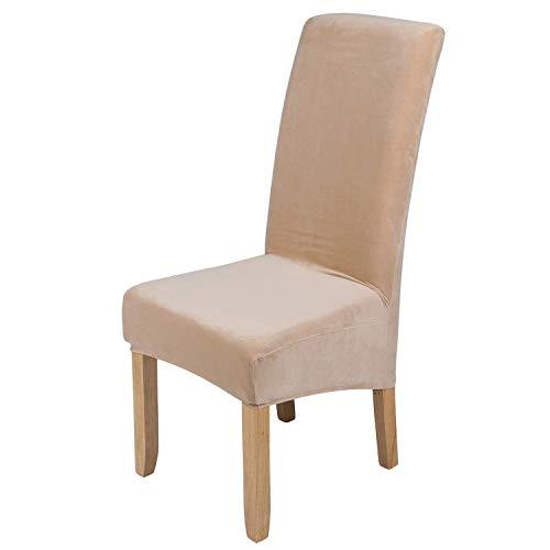 Homaxy Stuhlhussen aus Samt, Stretch, Elastan, Plüsch, kurz, einfarbig, für große Esszimmerstühle, Stuhlschutz, Heimdekoration, Cream, Set of 6 (Large)