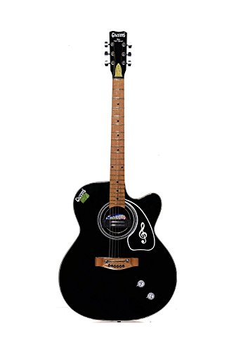 Givson Venus Super Special, 6-Strings, Semi-Electric Guitar, Right-Handed, Black, With Guitar Cover/Bag