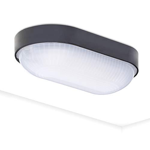 Kellerlampe LED Ovalleuchte Kellerleuchte LED Oktaplex Lighting 4000K 800lm Neutralweiß Base Oval IP65 9W Außenleuchte
