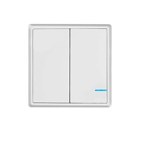 TSSS Funkschalter Lichtschalter Schalttafel mit LED Anzeige Licht (Enthält keinen Empfänger) (2 Kanal)