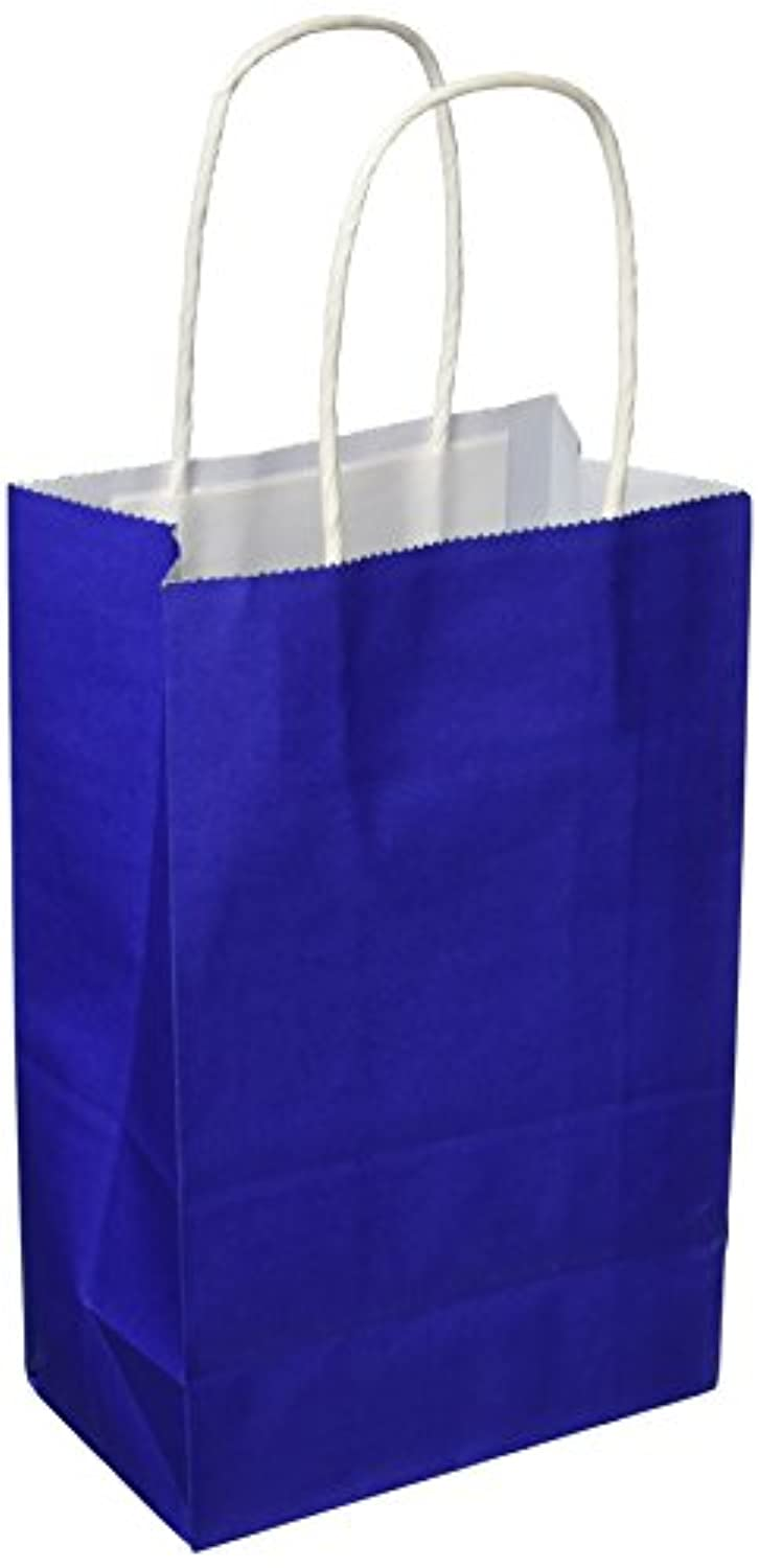Darice BAG233 13Piece, Assorted Fashion Colors Value Pack Paper Bag, 4.25 by 8 by 10.25 inch