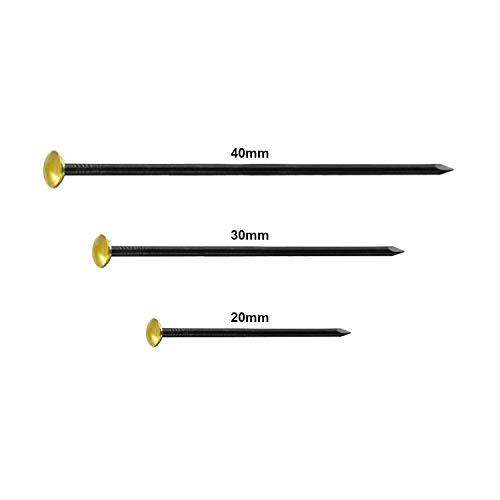 30 chiodi, diverse misure, 10 x 20 mm / 30 mm / 40 mm, colore: nero