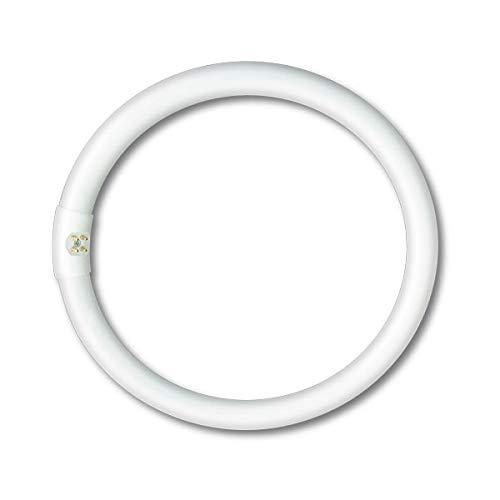 NOVA Line LRT32 Lampada Fluorescente Circolare G10Q, 32W, Ø300 mm, 6400K
