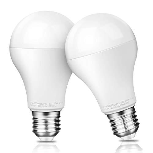Awenia Bombilla LED Esférica E27 20W (Equivalente a 150W), Luz LED 6500K 2452 Lúmenes Blanco Frío, Pack de 2