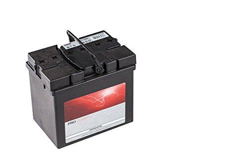 RATIOPARTS 101,860 Pro Power + Starterbatterie 12V 30Ah