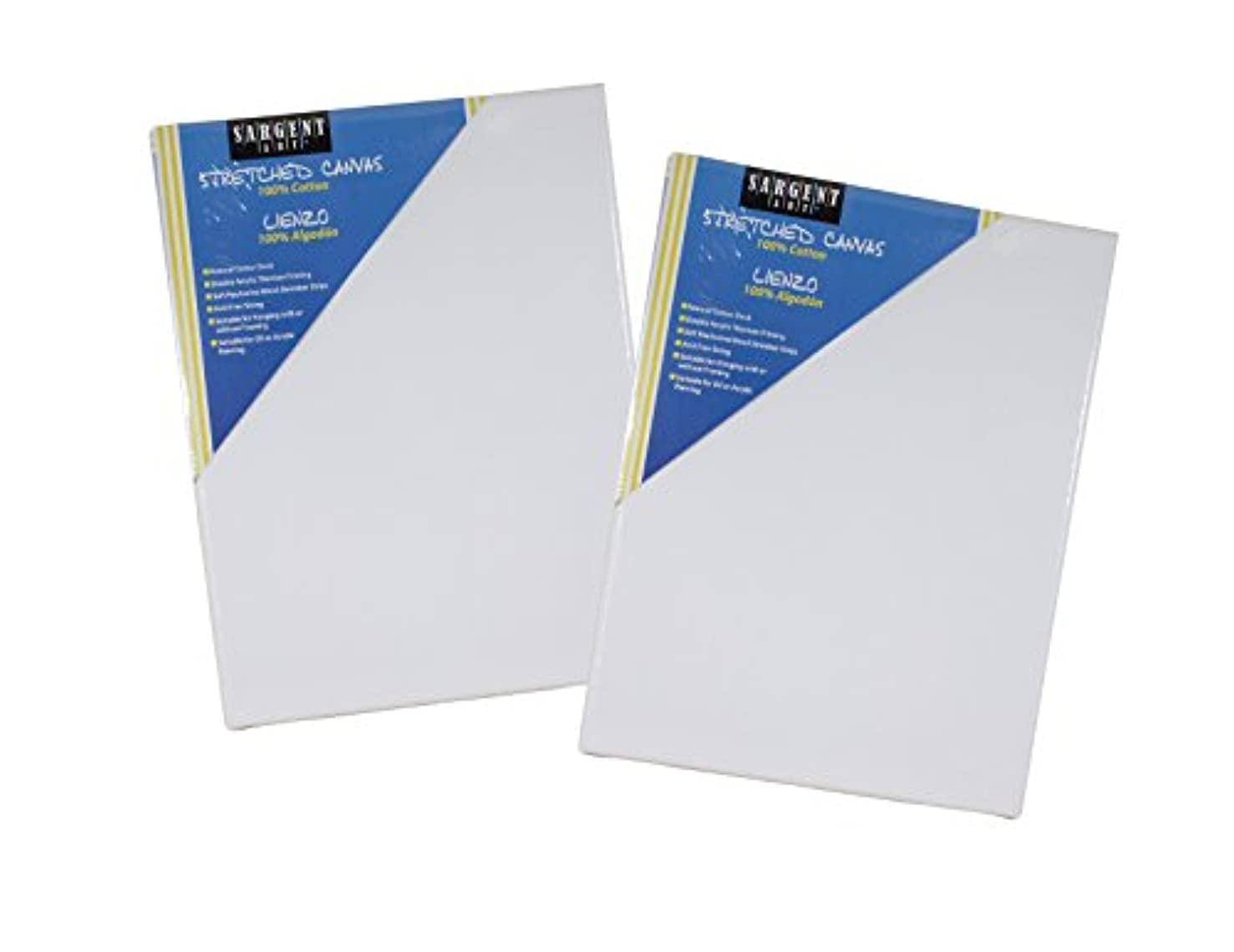 Sargent Art Value Pack 11 x 14 Inch Stretched Canvas Pack of 2 2 Piece