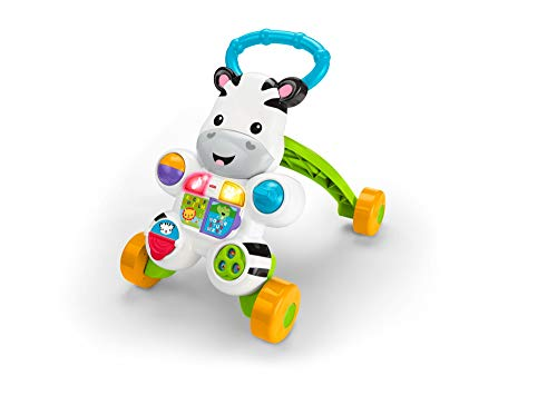 Fisher Price DLD91Zebra Primi Passi Spingibile,...