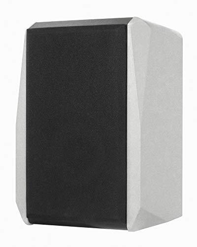 Dynavox TG-1000B Regal-Lautsprecher, kompakte 2 Wege-Box mit Abnehmbarer Abdeckung, Bassreflex-Öffnung, Paar, Silber