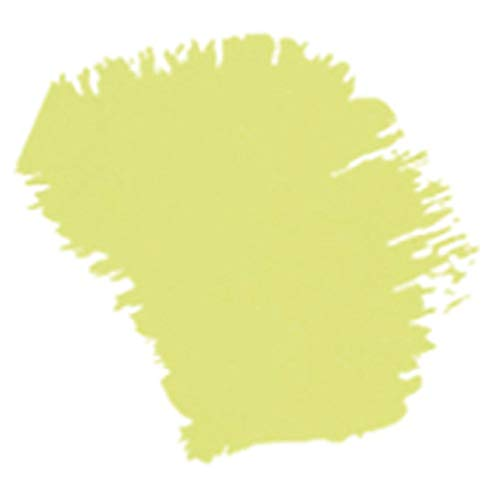 ACRILEX - ACRÍLICA FOSCA MATE 60ML (898 VERDE ALECRIM)