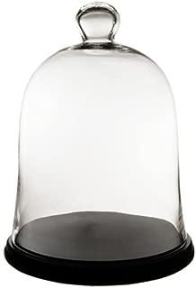 Best glass bell cloche wholesale Reviews