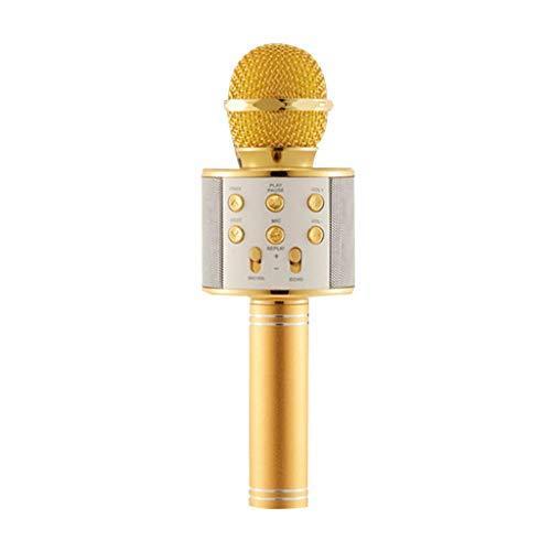 XiY Weinlese-Metallberufsmikrofon Dynamische Classic Retro Mic Kabelmikrofone Für PC DJ Controller Home Studio,Gold