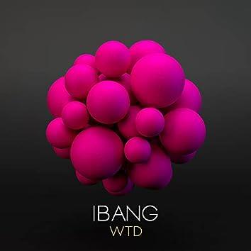 Wtd (Original Mix)