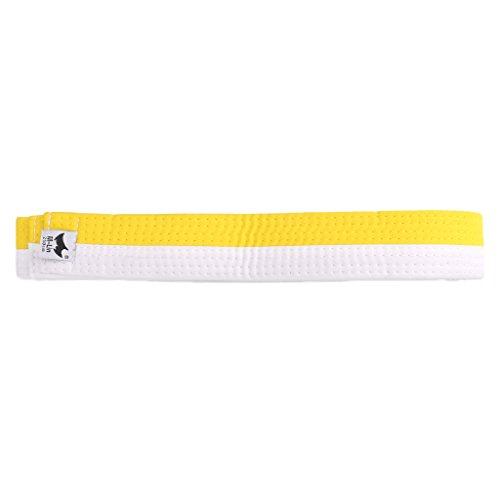 ZIRAN Cinturón de Taekwondo Profesional Karate Judo Doble Envoltura Artes Marciales Rayas Deportes Taekwondo Cinturón-Poliéster + EVA