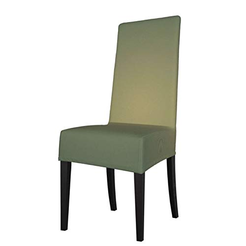 281 Gradient Comfort Protection Chair Covers for Dining Room Stretch Printed Chair, Removable and Washable