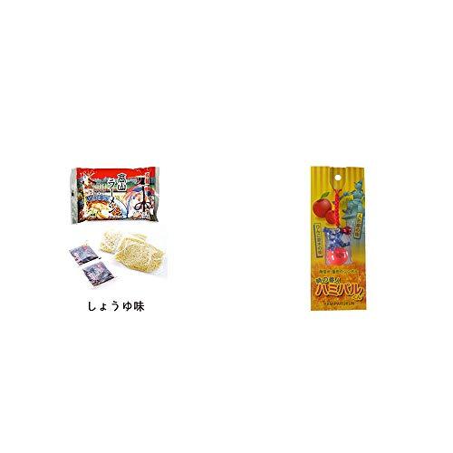 [2点セット] 飛騨高山ラーメン[生麺・スープ付 (しょうゆ味)]・信州・飯田のシンボル 時の番人ハミパルくんストラップ