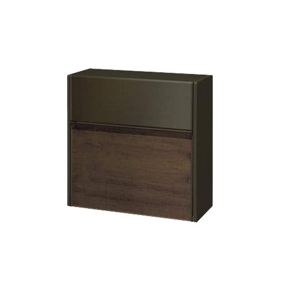 キャンプメンバービジュアル郵便ポスト 郵便受け SWE-1型 SWEポスト 木調タイプ TPCトラッドパイン SWE型 壁付けタイプ 壁付けポスト