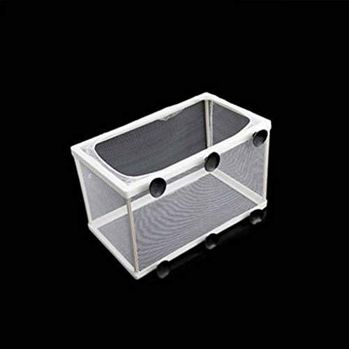 rongweiwang Aquarium Guppy Zucht Züchter Fisch-Baby-Verbandsmull Trap-Box Trenner