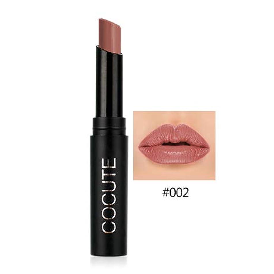 Long-Lasting Matte Lipstick Moisturizer Lips Makeup Cosmetics Waterproof Easy To Wear Nude Lip Stick 2.5G