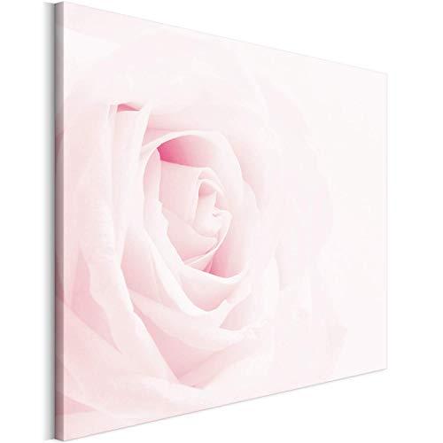 Revolio 40x30 cm Impression sur Toile Murale Tableau Art Peinture Image MotifModerne Décoration pour Le Salon Intérieur Photo - la Nature Fleur Rose Blanc Rose