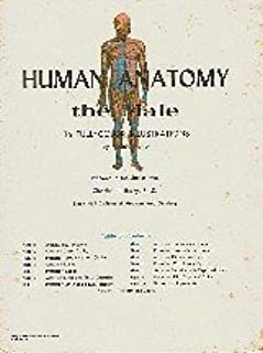 Human anatomy: The male, 16 full-color illustrations