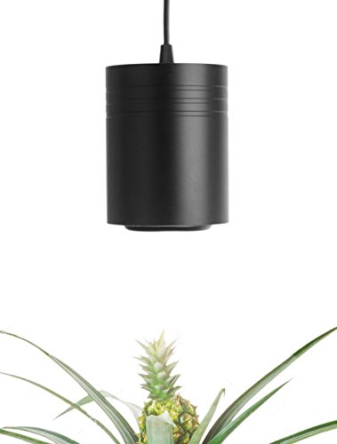 Small Black Aspect Luxury LED Grow Light – for Small and Medium Sized Plants