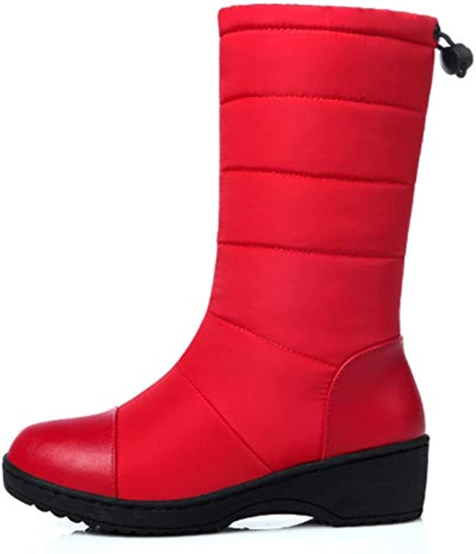 BBNL-Q DDL- Snow Boots Hot Winter Warm Snow Boots Fashion Platform Fur Plush shoes Low Heels Mid-Calf Boots Women Down Black Red shoes E667